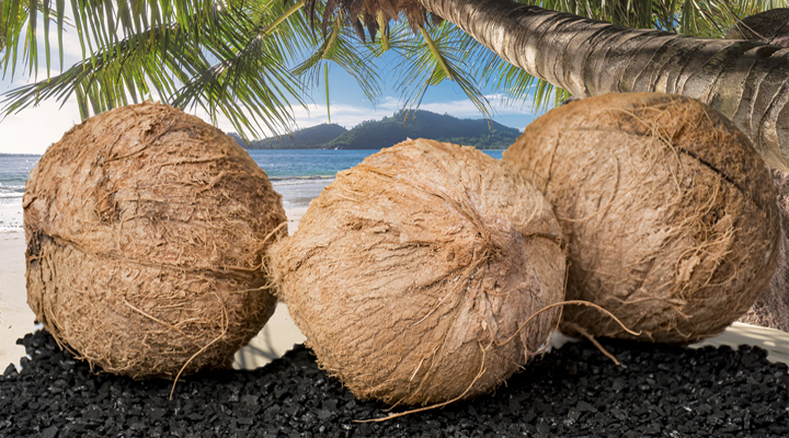 VOCarb® Granular Activated Carbon - Coconut Shell Based